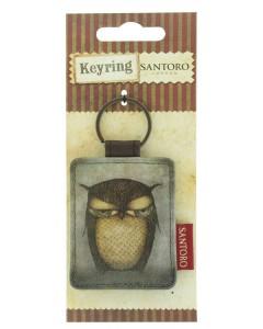 333EC05 - Flat Rectangular Key Ring - Grumpy Owl - packaged - web