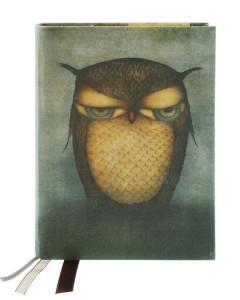 365EC04 - Cloth Notebook - Grumpy Owl - Front 2 WEB
